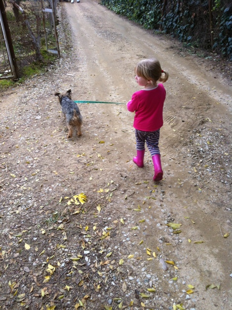 Walking the dog is one of Lola's favourite occupations.