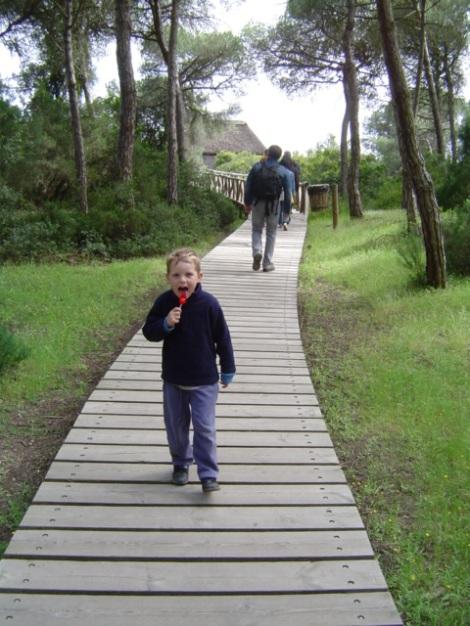 Doñana National Park, Huelva