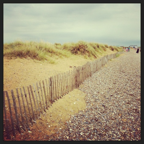 Shingle, sand, dunes, grass.
