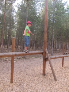 Adventure playground in the forest.