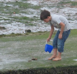 Zac lets the crabs back into the river.