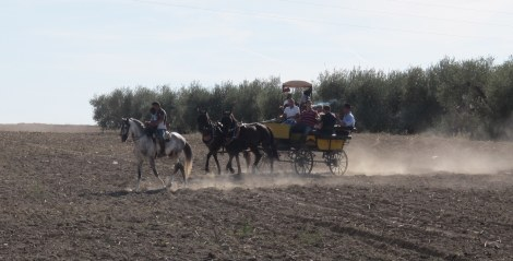 A horse-drawn cart kicks up dust crossing a field.