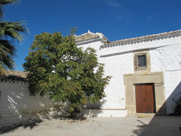 The cortijo, which dates from the 17th century, with its patio and walnut tree.