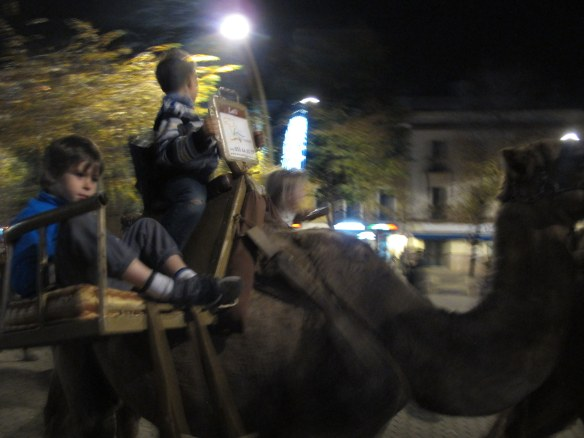 Riding a camel on the Alameda. As you do.
