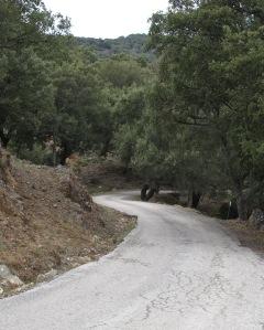 road, journey, trip